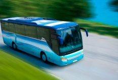 Autobus para fiestas